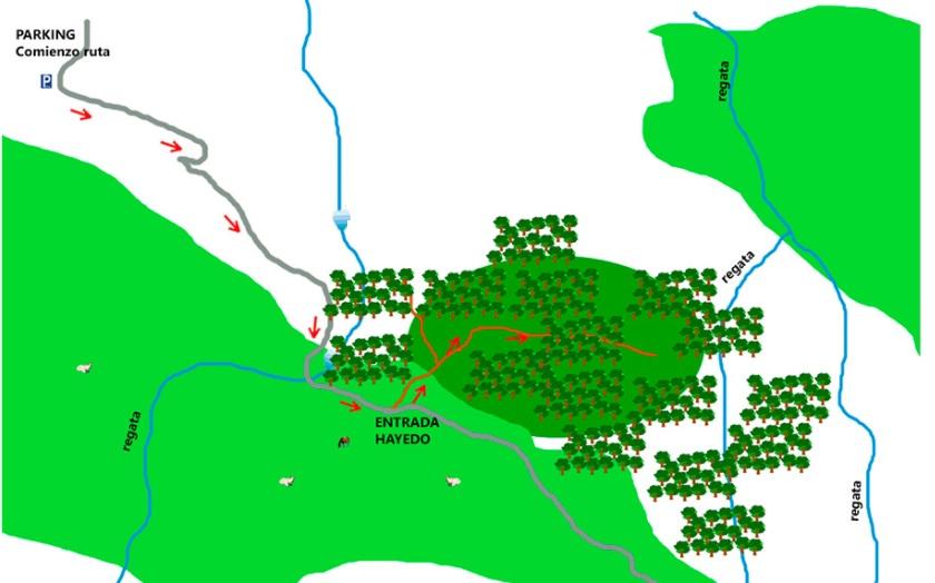 Mapa de la cascada Belaustegi